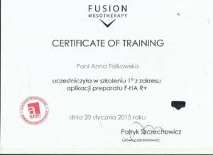 certyfikat Anna Falkowska Studio Urody ANA